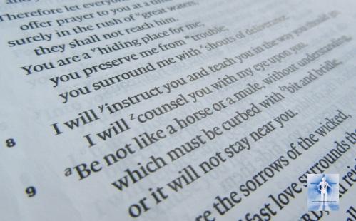 Psalm 32:8-9